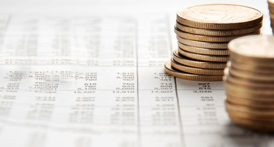 Financial management software for your business